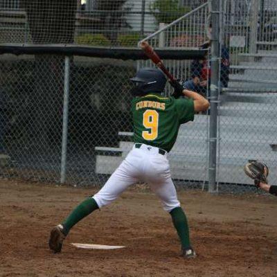 baseball-condors